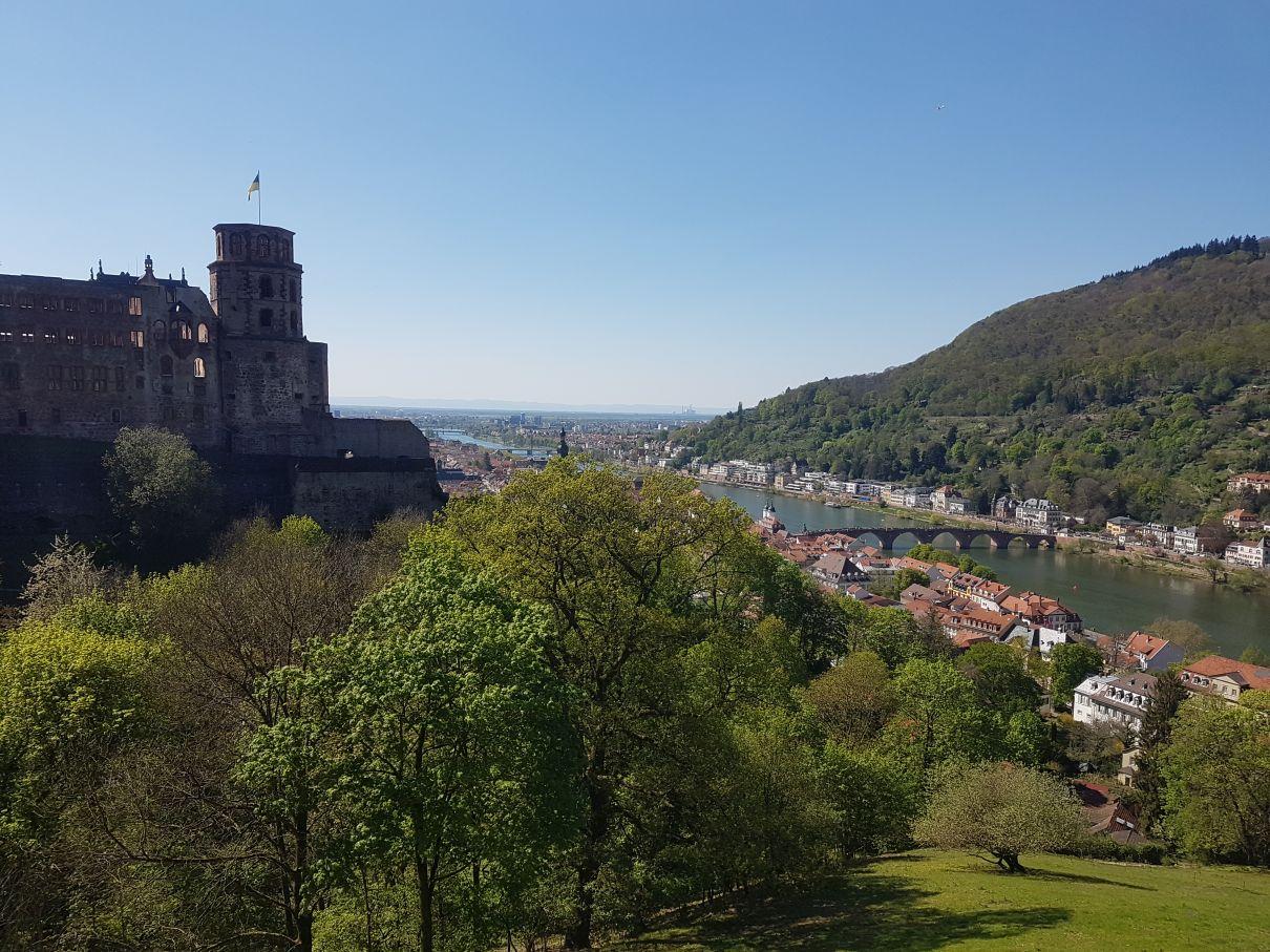 Schloss Heidelberg Aussicht